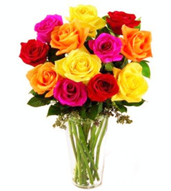 Mixed roses bouquet (dozen)
