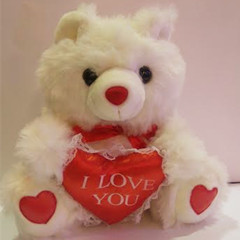 Medium love Teddy bear