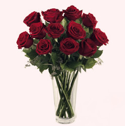 Red roses arrangement (dozen)
