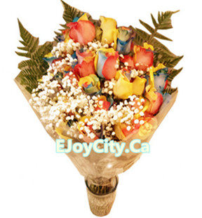 Rainbow roses arrangement (dozen)