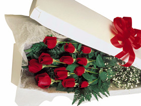 One dozen roses (boxed)