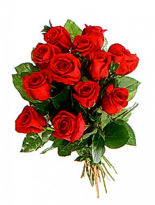 Medium red roses (dozen)