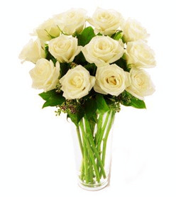 Medium white roses (dozen)