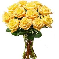 Medium yellow roses (dozen)