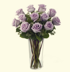 Dozen lavender roses (long stem)