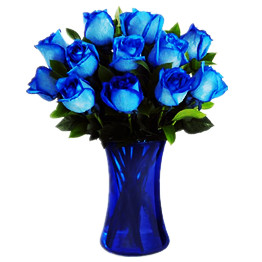 Dozen blue roses (long stem)