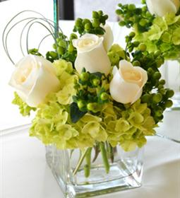 White green arrangement